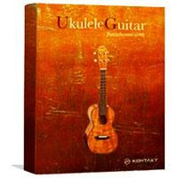 وی اس تی گیتار یوکللی Pettinhouse Ukulele Guitar
