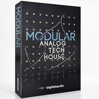 خرید اینترتی بیت و لوپ سبک تچ هاوس Big Fish Audio Modular Analog Tech House