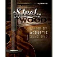 بیت پاپ برپایه گیتار آکوستیک Big Fish Audio Steel and Wood Songwriter Acoustic Sessions