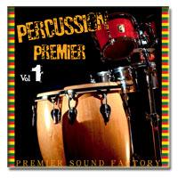 وی اس تی بانگو و کونگا Premier Sound Factory Percussion Premier Vol.1