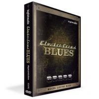 خرید اینترتی بیت مدرن الکتریک بلوز big fish audio Electri-Fried Blues