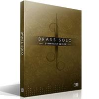 وی اس تی سولو هورن Native Instruments Symphony Series Brass Solo