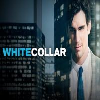 خرید اینترنتی سریال یقه سفید White Collar دوبله در تهران و شهرستان ها