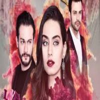 فروش آرشیو کامل سریال های ترکی(دوبله یا زیرنویس) و... هر 1 ترابایت 250/000 تومان!!!