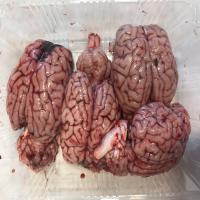 مغز بره عددی