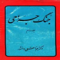 توضيحات کتاب  جنگ جراحی   ( جلد دوم)  عباسقلی  دانشور