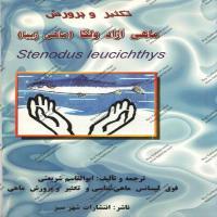 توضيحات کتاب تکثر و پرورش ماهی آزاد ولگا(ماهی زیبا) ابوالقاسم شریعتی نشر شهر سبز