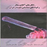 توضيحات کتاب انگل های آکانتوسفال و گونه های شناسایی شده در ایران ساره توکلی نشر پرتو واقعه