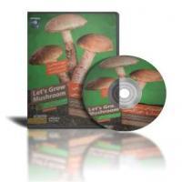 پکیج تصویری خود اشتغالی را از همین امروز شروع کنید آموزش پرورش قارچ خوراکی