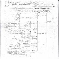 توضيحات جزوه ازدیاد نباتات –کروش وحدتی – دانشگاه تهران