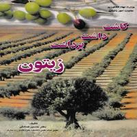 توضيحات کتاب کاشت داشت برداشت زیتون حسین صادقی نشرآموزش کشاورزی