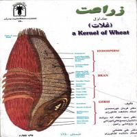 توضيحات کتاب زراعت جلد1 غلات قربان نورمحمدی نشر دانشگاه شهید چمران