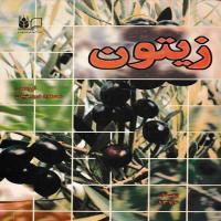 توضيحات کتاب زیتون محمود درویشیان نشر آموزش کشاورزی