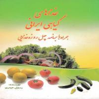 توضيحات کتاب غذاهایس گیاهی ایرانی همراه ب برنامه چهل روز غذایی رسول حیدری نشرقدیس