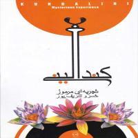 توضيحات کتاب کند الینی تجربه ای مرموز خسرو شریف پور نشر پیکان