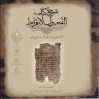 توضيحات کتاب شرح کتاب الفصول لابقراط لابن ابی صادق النیشابوری نشر المعی