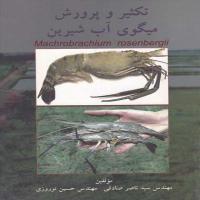 توضيحات کتاب تکثیر و پرورش میگوی آب شیرین ناصر صادقی نشر راه دانایی