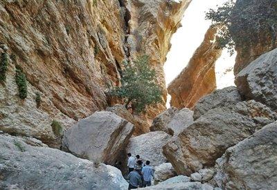غار غزال