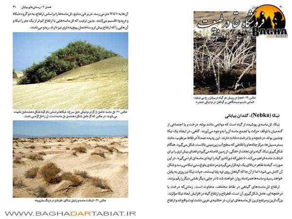 کتاب بیابان گردی در ایران