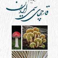 قارچ های سمی ایران