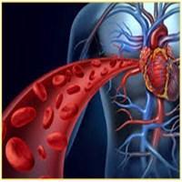 اثر افزایش سرب بر سلامت انسان