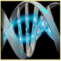 آنتی تریپسین حاصل از کشت سوسپانسیون سلول جهش یافته