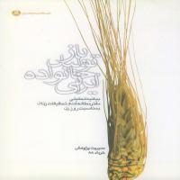 بازتولید خانواده ایرانی(بیانیه سال 1388)