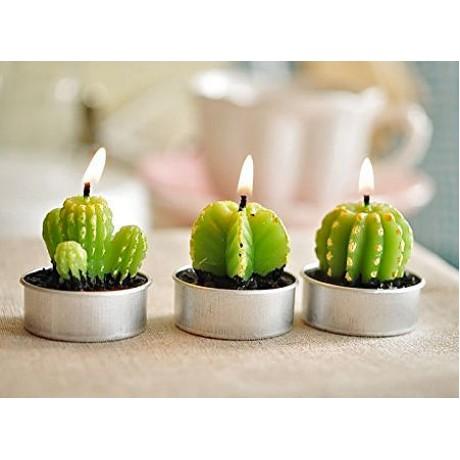 شمع های تزیینی کاکتوس