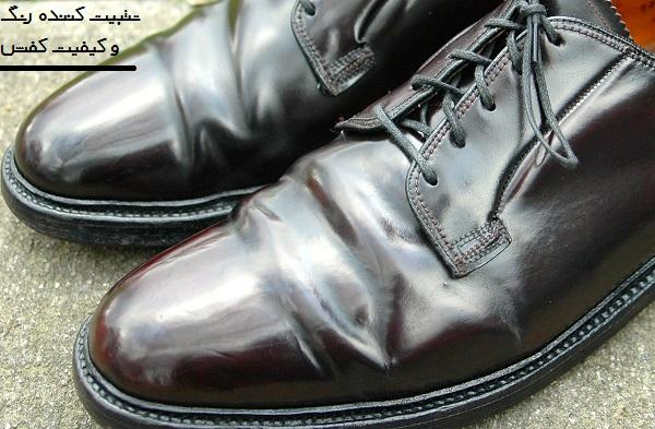 پولیش واکس کفش جادویی KINGLY (مینی سایز)