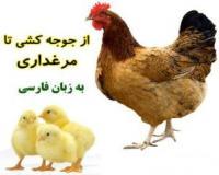 تاسیس مرغداری و راهنمای پرورش مرغ گوشتی