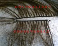 رشته مو