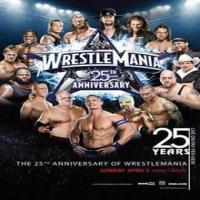 WrestleMania 25 2009
