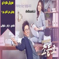 سریال کره ای وکیل من آقای جو 2