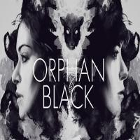 سریال Orphan Black چهار فصل (پایان فصل 4)