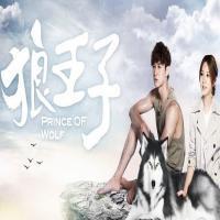 سریال تایوانی شاهزاده گرگ
