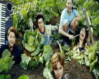 سریال کره ای مزرعه دار مدرن