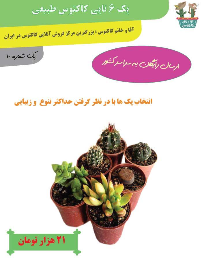 http://d20.ir/14/Images/688/Large/cactus10.jpg