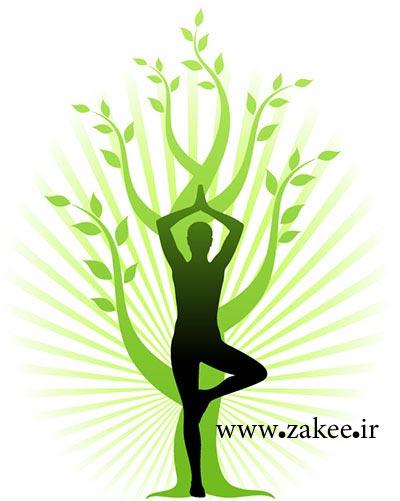 آنچه در مورد یوگا باید دانست