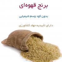 برنج قهوه ای 2 کیلویی بدون کود و سم شیمیایی
